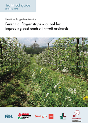 Perennial flower strips – a tool for improving pest control in fruit orchards