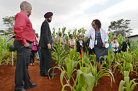 A group of people is standing in a plot of young maize plants. In the front, FiBL project leader Gurbir Bhullar is talking to the Kenyan researcher Anne W. Muriuki.