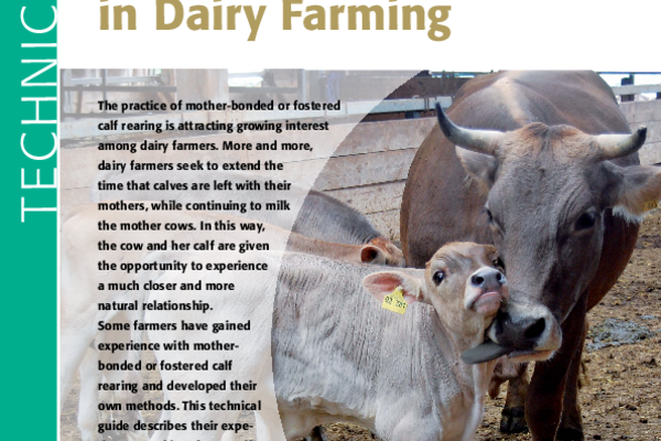 Cover: Technical guide on mother-bonded and fostered calf rearing in dairy farming