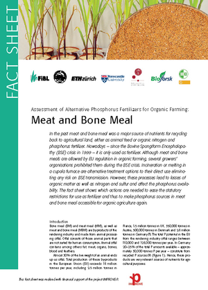 Assessment of Alternative Phosphorus Fertilizers for Organic Farming: Meat and Bone Meal