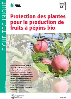 Protection des plantes pour la production de fruits à pépins bio