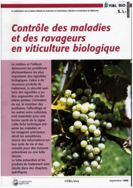 Contrôle des maladies et ravageurs en viticulture biologique