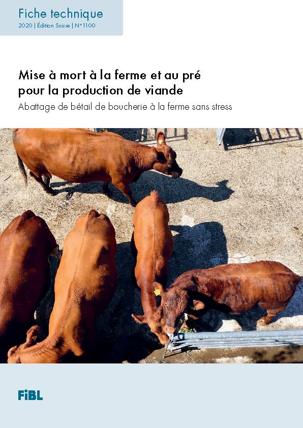 Mise à mort à la ferme et au pré pour la production de viande