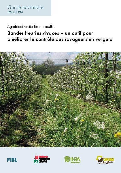Bandes fleuries vivaces – un outil pour améliorer le contrôle des ravageurs en vergers