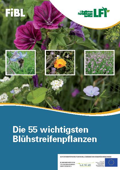Die 55 wichtigsten Blühstreifenpflanzen
