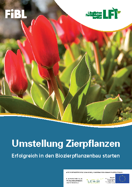 Umstellung Zierpflanzen