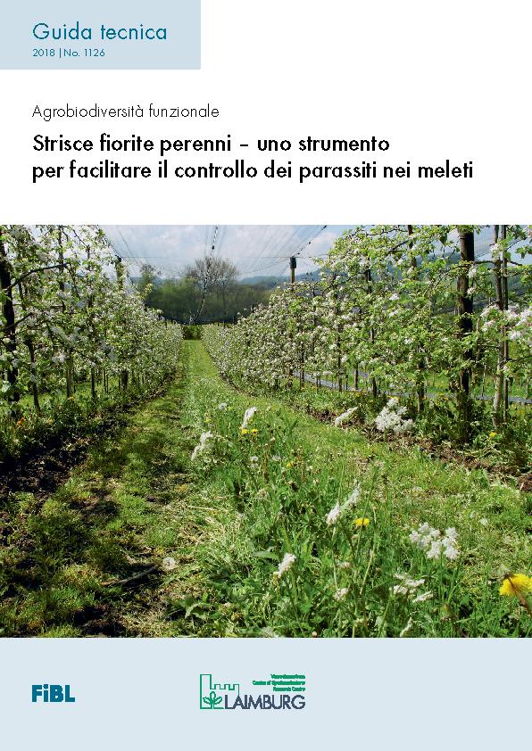Strisce fiorite perenni – uno strumento per facilitare il controllo dei parassiti nei meleti