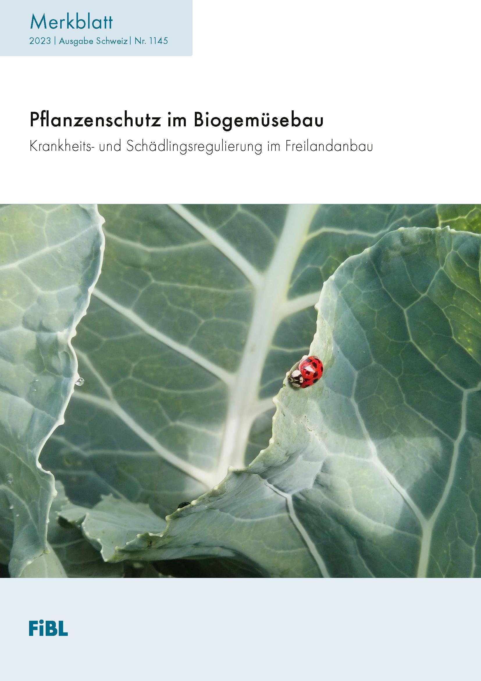 Krankheits- und Schädlingsregulierung im Biogemüsebau