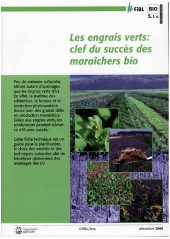 Les engrais verts, clef du succès en maraîchage biologique