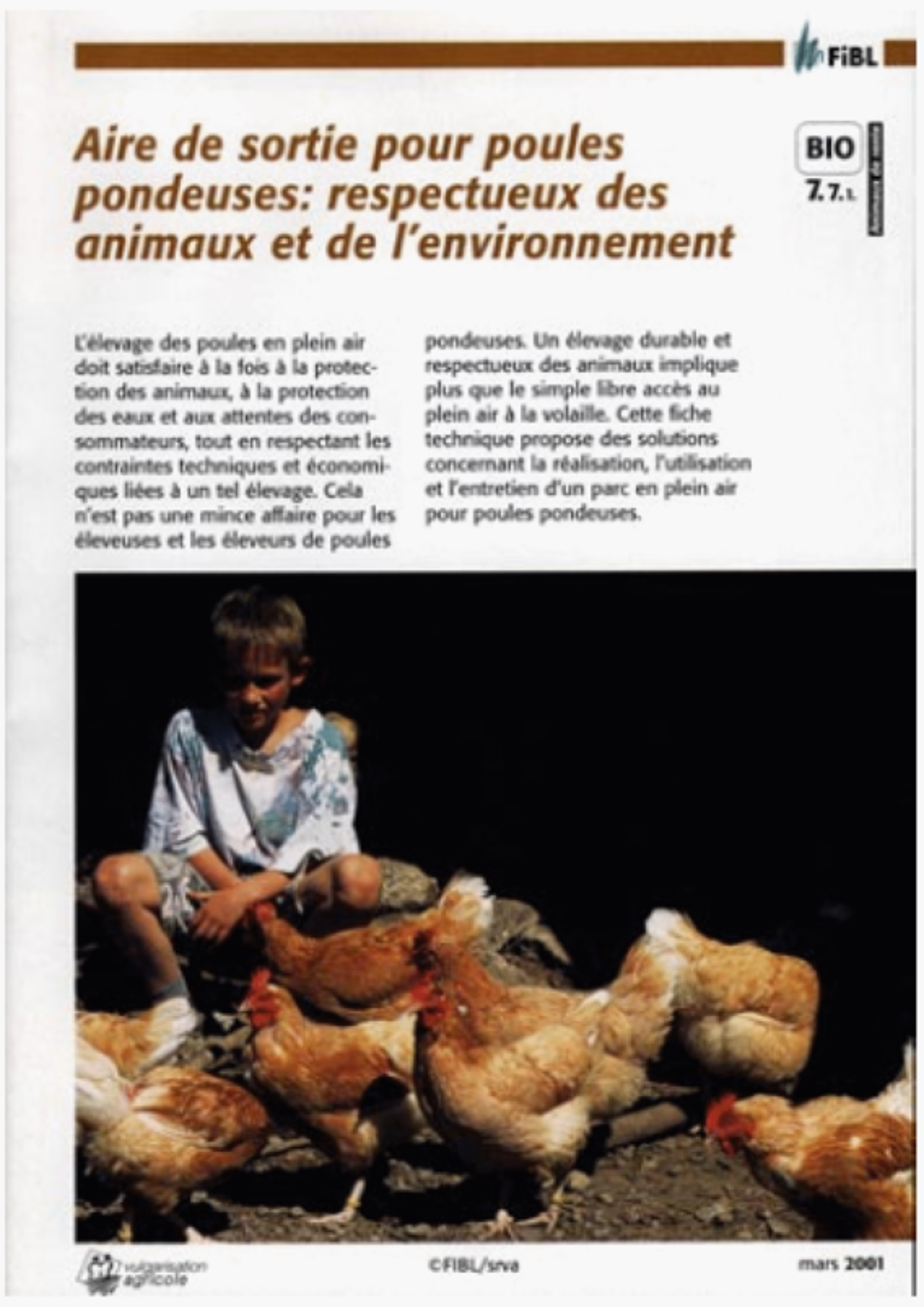 Aire de sortie pour poules pondeuses: respectueux des animaux et de l'environnement