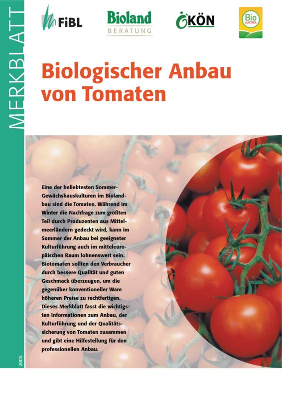 Biologischer Anbau von Tomaten