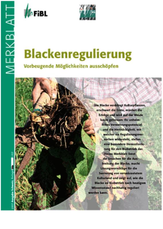 Blackenregulierung