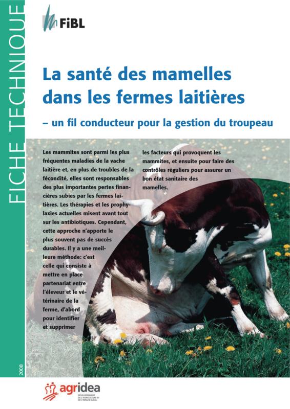 La santé des mamelles dans les fermes laitières