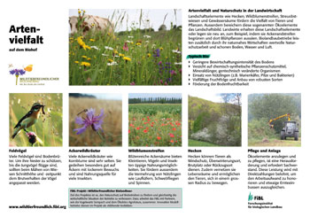 Feldrandtafel: Artenvielfalt auf dem Biohof