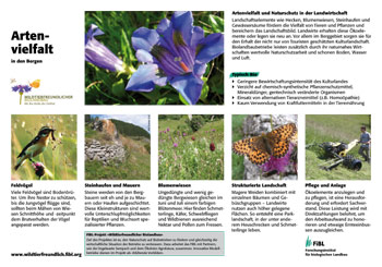 Feldrandtafel: Artenvielfalt in den Bergen