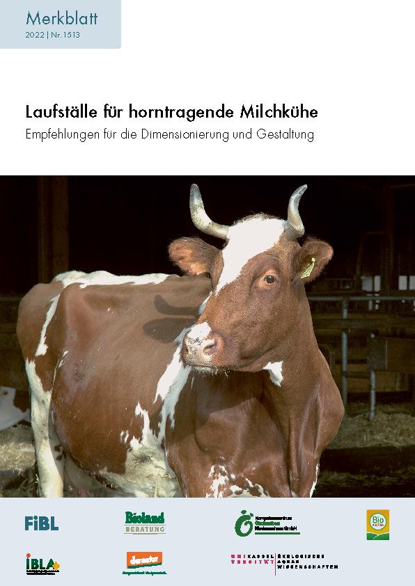 Laufställe für horntragende Milchkühe