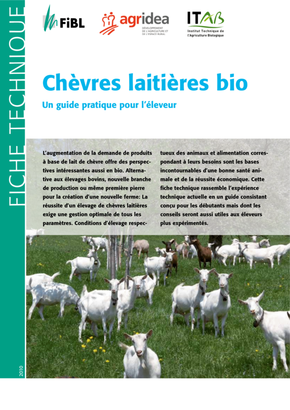 Chèvres laitières bio