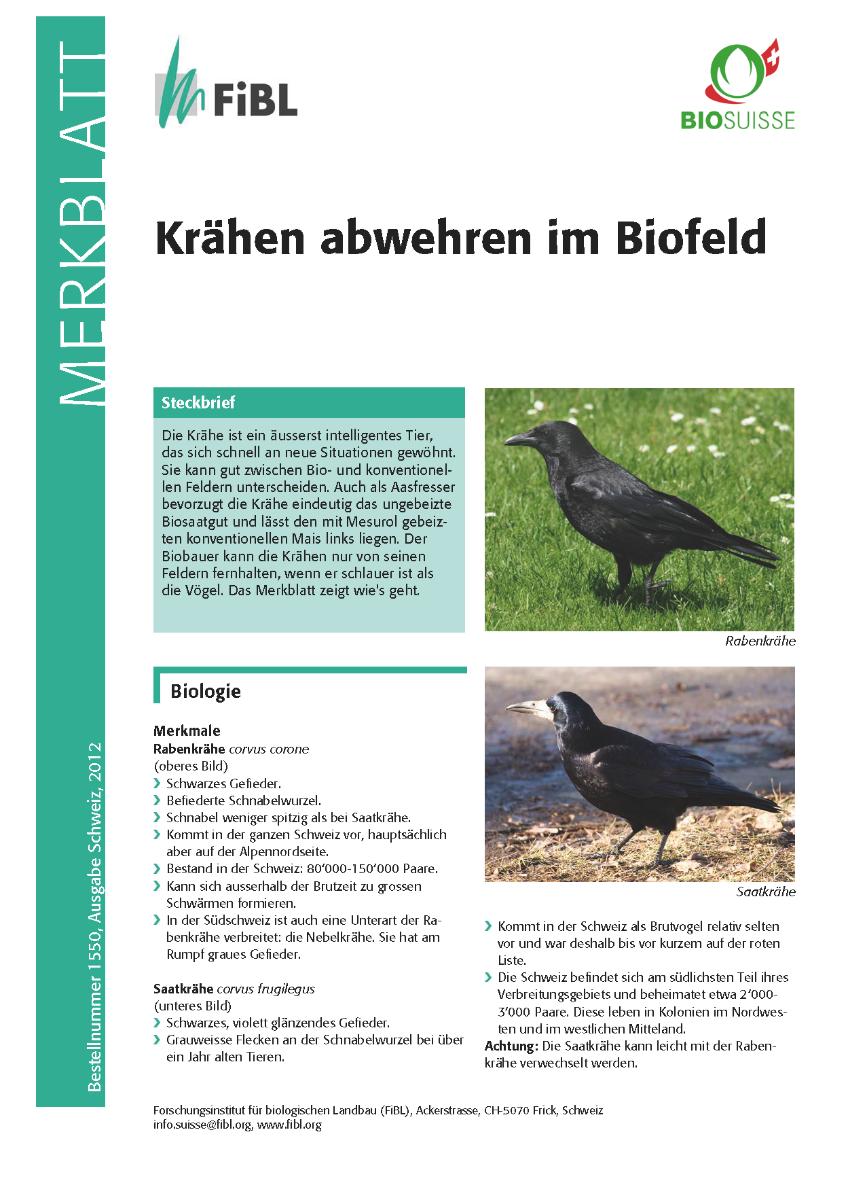 Krähen abwehren im Biofeld