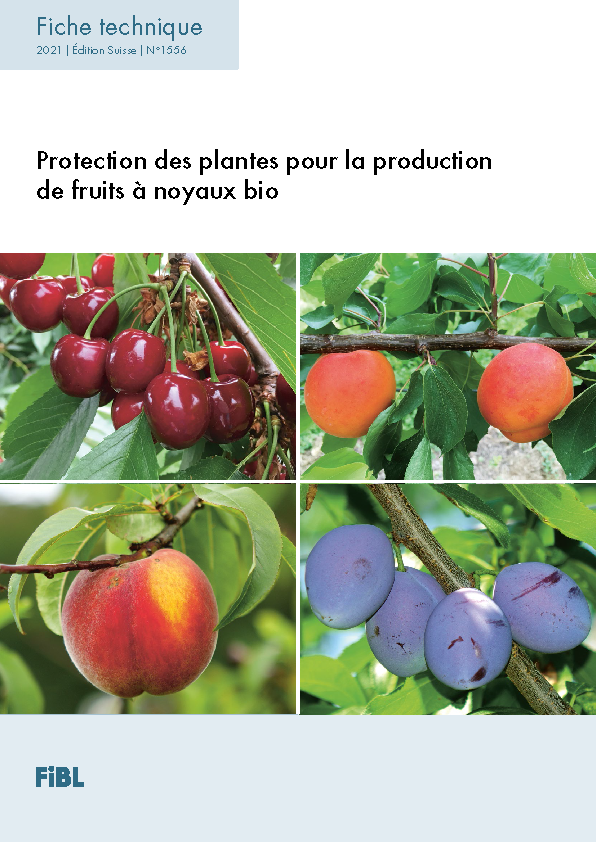 Protection des plantes pour la production de fruits à noyaux bio