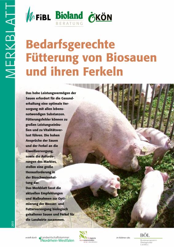 Bedarfsgerechte Fütterung von Biosauen und ihren Ferkeln