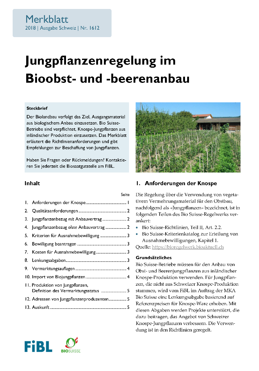 Jungpflanzenregelung im Bioobst- und -beerenanbau