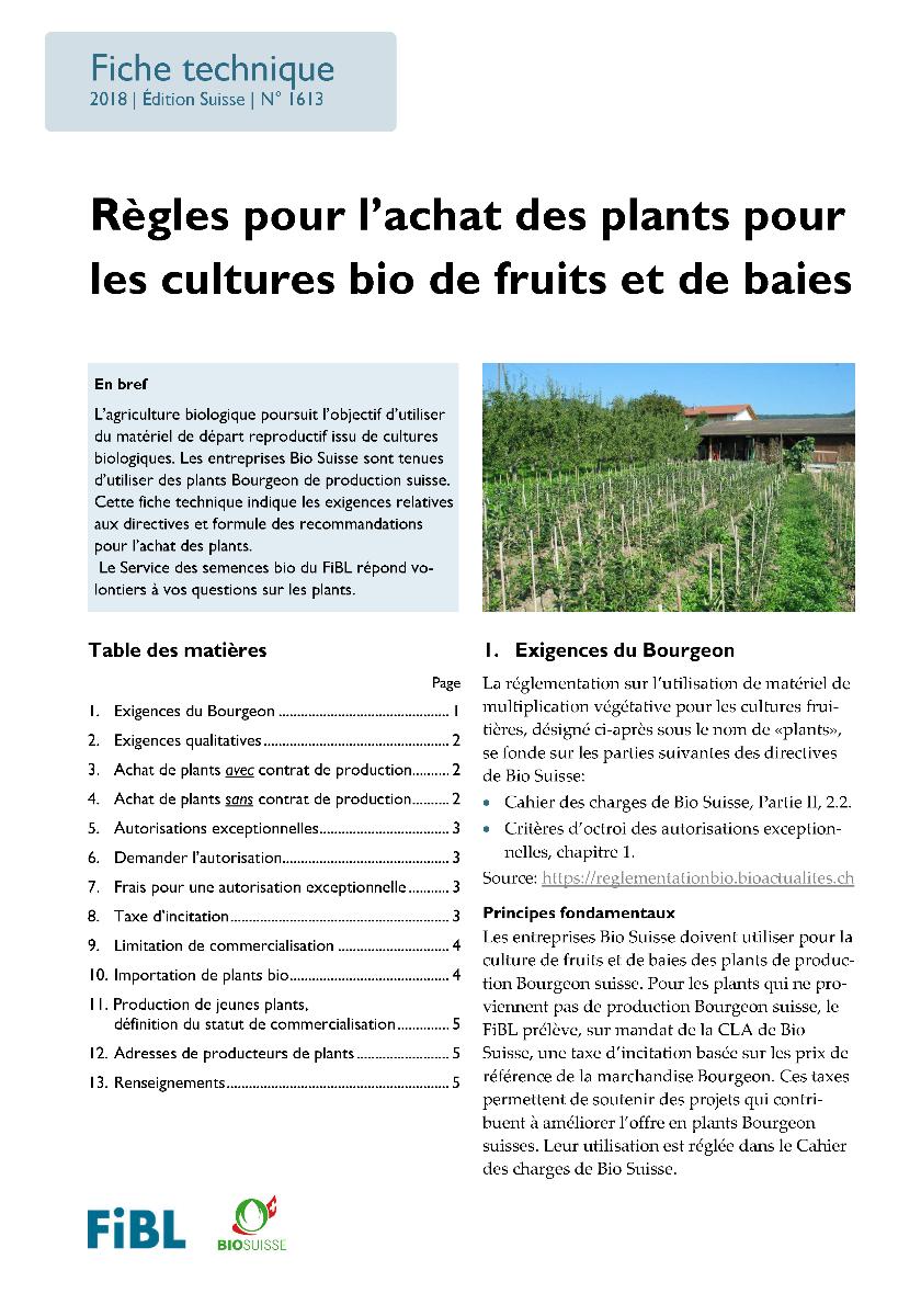 Règles pour l'achat des plants pour les cultures bio de fruits et de baies