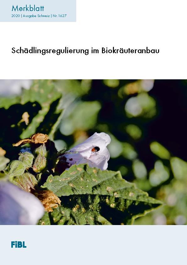 Schädlingsregulierung im Biokräuteranbau