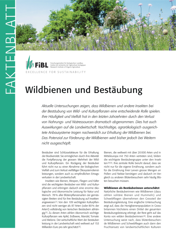 Wildbienen und Bestäubung