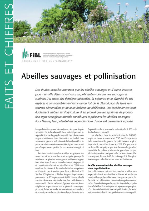 Abeilles sauvages et pollinisation