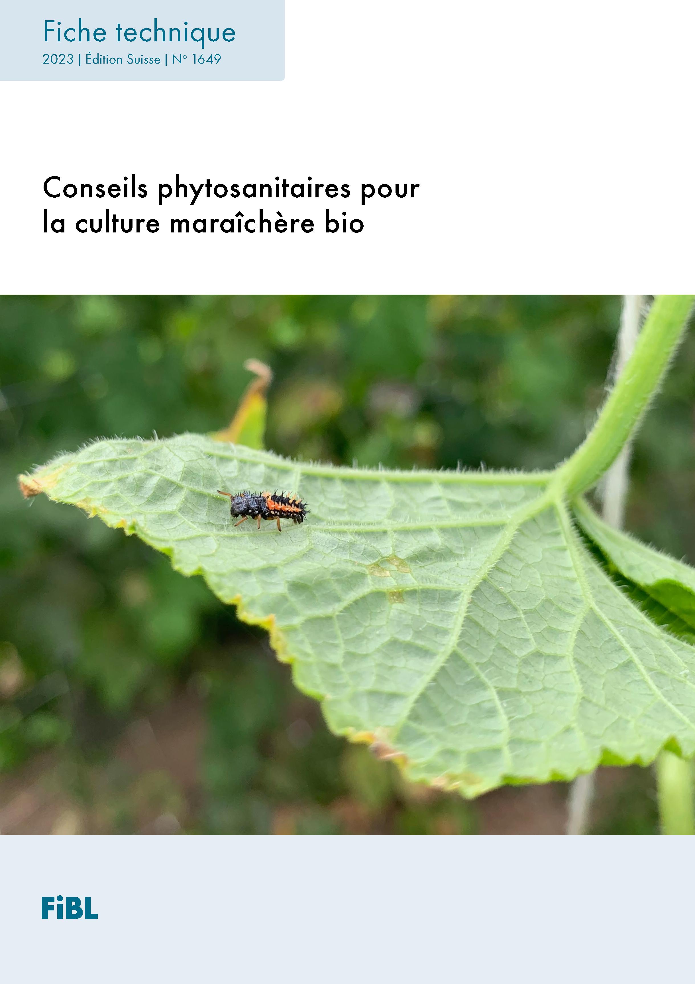 Conseils phytosanitaires pour la culture maraîchère biologique