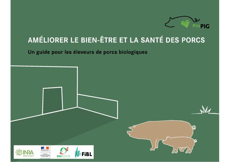 Améliorer le bien-être et la santé des porcs