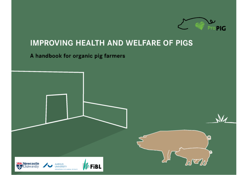 Cover: Improving health and welfare of pigs