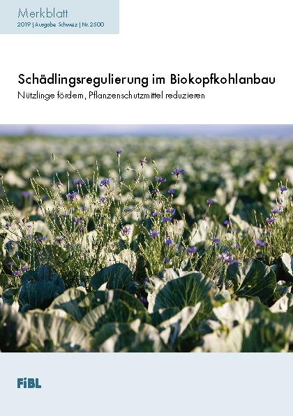 Schädlingsregulierung im Biokopfkohlanbau