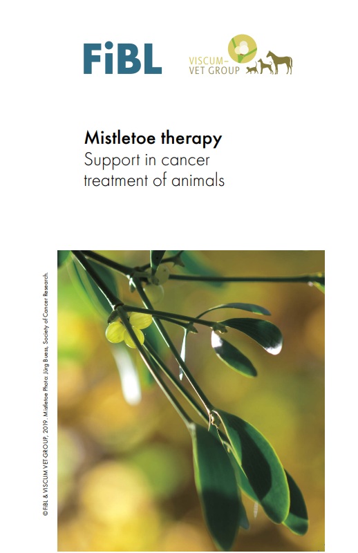 Cover: Mistletoe therapy