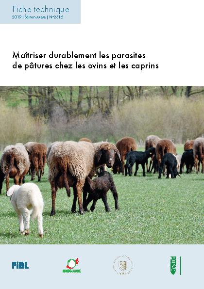 Maîtriser durablement les parasites de pâtures chez les ovins et les caprins